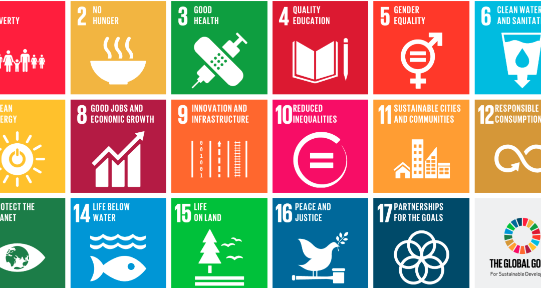 SUCCEEDING WITH THE SDGS CALLS FOR STRONG LEADERSHIP